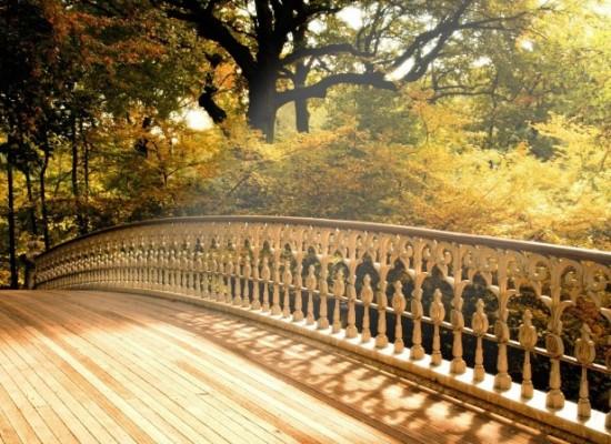 Материалы в строительстве мостов сегодня и завтра